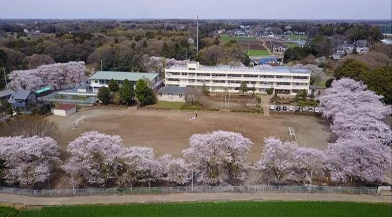 ホーム - 常総市立菅生小学校